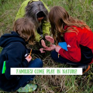 Family Adventures in Nature: Day 5 @ Blackburn Lake Nature Reserve | | |